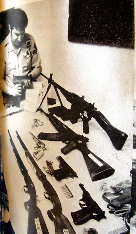 Hansaduttas guns