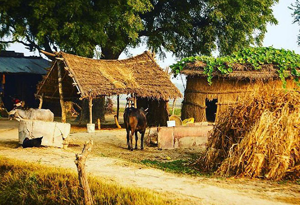 The Vrindavana Village - AT ANY COST DO IT